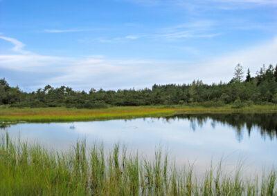 Der Grundlose See | Urbanhof Fam. Reif